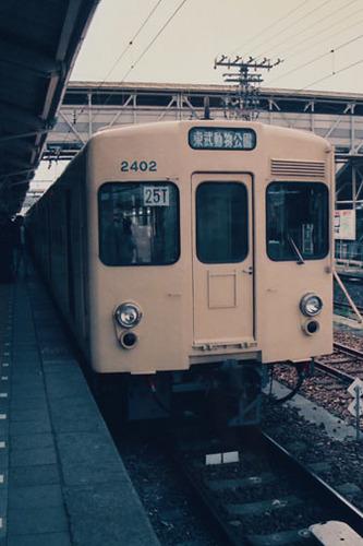 8006.jpg